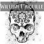 Image logo artiste william